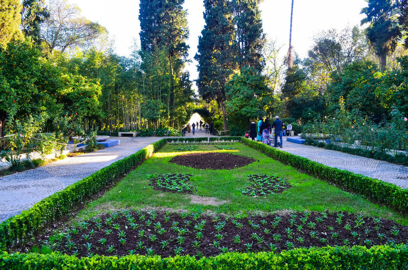 View of park on sunny day