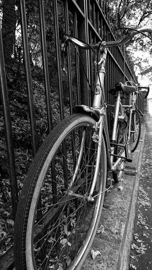 Bike Chained Up Railings Bicycle Railing