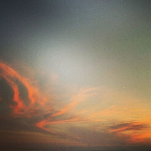 Summer ☀ Sunset