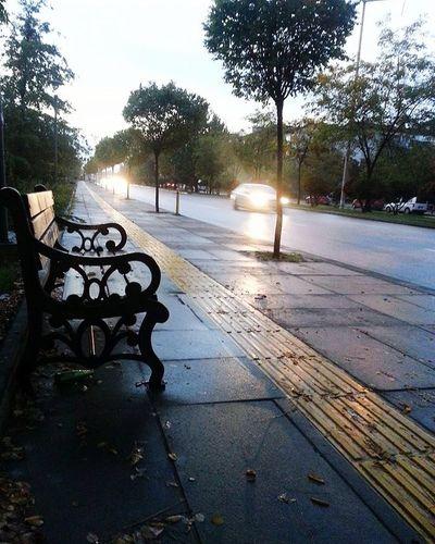 Ankara Türkiye Hüzün... Gecmis Autumn Autumn colors Road Autumn Autumn🍁🍁🍁 Tree Water Sky