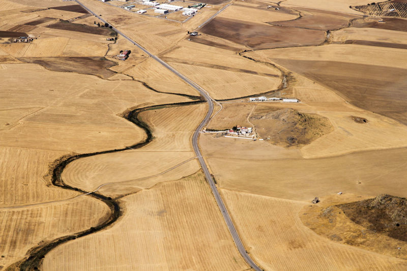Aerial view of sheep fields in Cordoba, Andalusia Landscape Environment Aerial View No People High Angle View Day Land Scenics - Nature Nature Rural Scene Tranquil Scene Outdoors Non-urban Scene Tranquility Brown Pattern Arid Climate Sunlight Agriculture Field Road