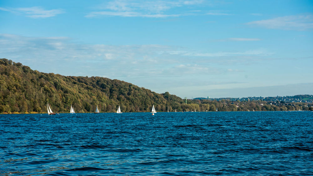 Nikon D750 Baldeneysee Beauty In Nature Bird Blue Day Nature Nautical Vessel No People Outdoors Scenics Sea Sky Tranquil Scene Tranquility Tree Water Waterfront EyeEmNewHere Perspectives On Nature Ruhrpottromantik Ruhrgebiet Ruhrpott Landscape Baldeneysee NRW Mountain Horizon Over Water Animal Themes