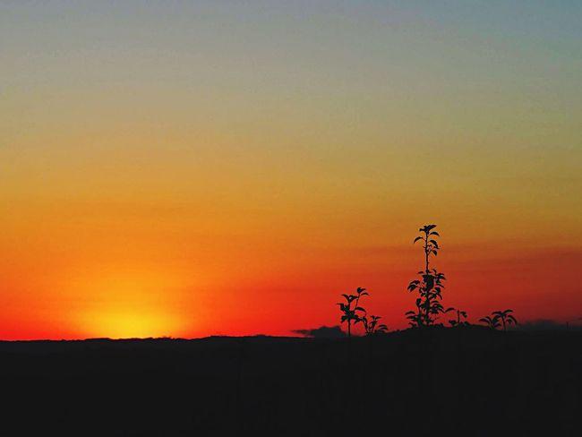 Beautiful sunrise. EyeEm Best Shots - Sunsets + Sunrise Sunrise Nova Petrópolis EyeEm