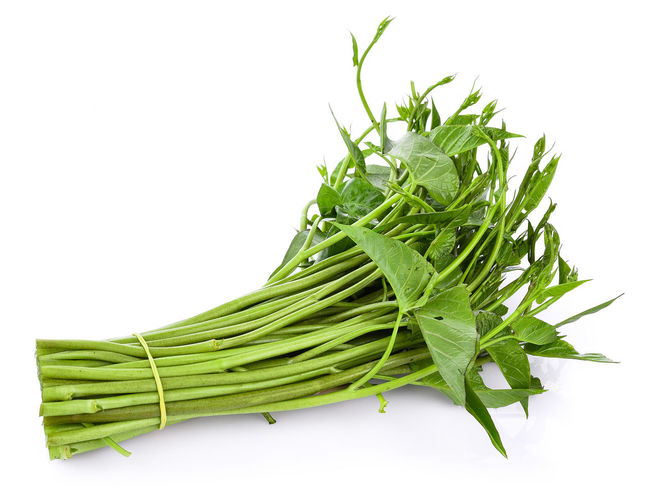 Swamp Morning Glory on white background Close-up Food Food And Drink Freshness Green Color Herb Leaf Organic Swamp Morning Glory Vegetable White Background