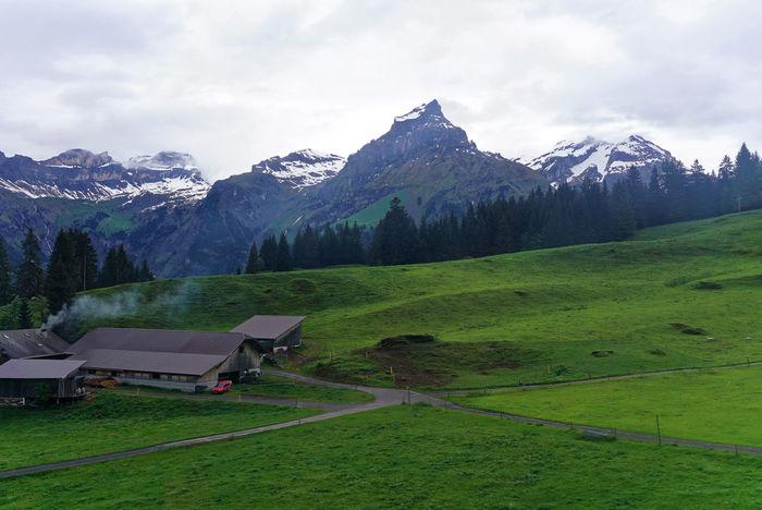 Beauty In Nature Grass Green Color Idyllic Landscape Mount Titlis, Switzerland. Mountain Mountain Range Nature Outdoors Rural Scene Scenics Sky Tranquil Scene Tranquility Village Original Experiences June Showcase Showcase June