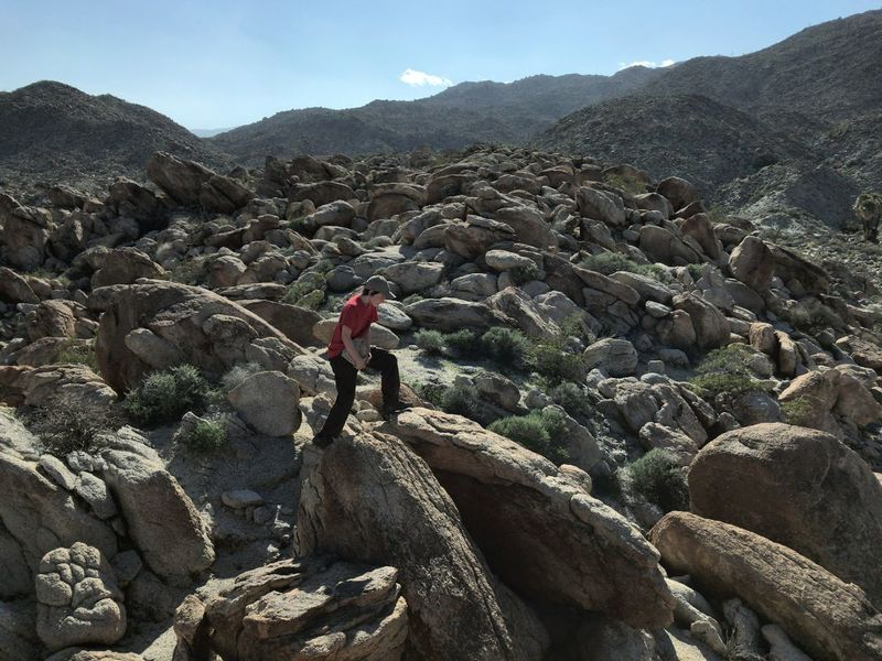 Carrying rocks in the desert Rock - Object Mountain Nature Hiking IPhoneography Tadaa Community The Purist (no Edit, No Filter) Anza Borrego Park View Anza Borrego State Park