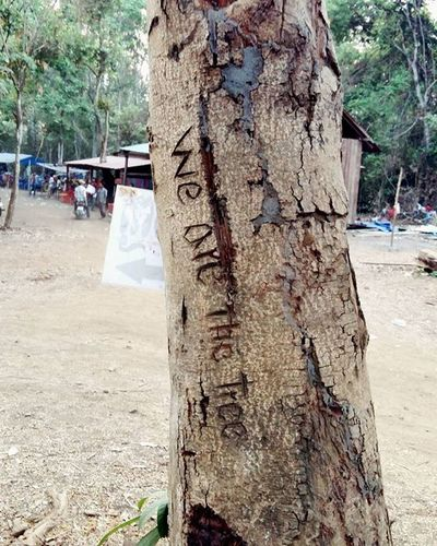 good Saying but by Inscribing on a Tree u are juz damaging the tree, no?! 😓😓 WeAreTheTree Trees Greens Nature Environment Engrave Words Trunk