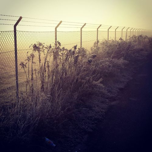 Behindthefence Airport Cold Cold Days