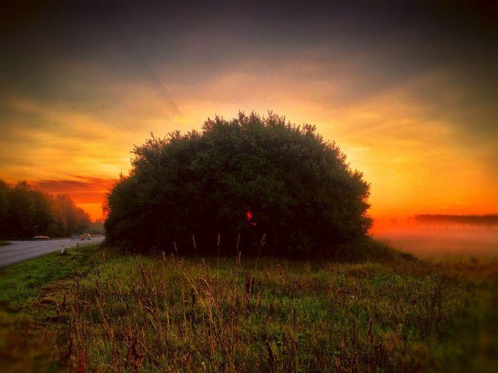 Tadaa Community Sun Rise Godthåb Danmark