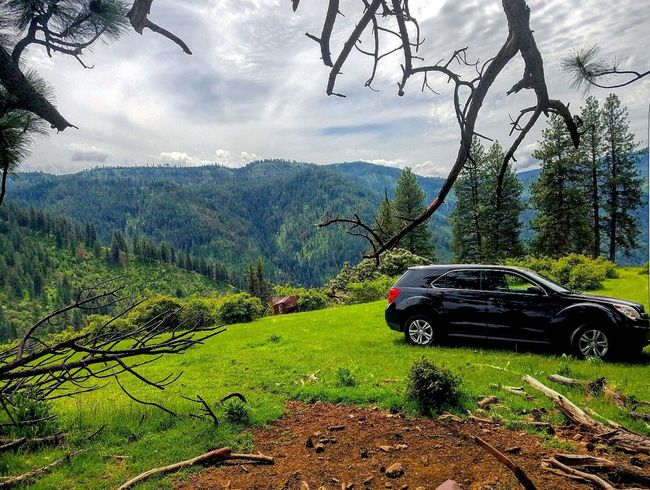 My Chevy Equinox AWD 💪❤ Chevrolet Equinox AWD  Offroad Offroadmasters Idahoexplored Idaho The Great Outdoors With Adobe The Great Outdoors – 2016 EyeEm Awards Forest Forest Photography Nature Check This Out Blind Hunting