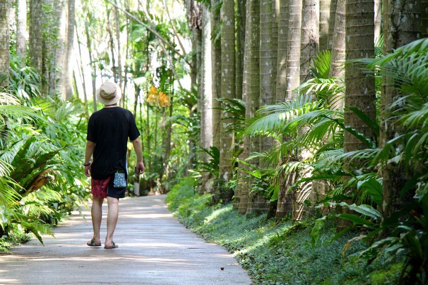 2016/08/28 Japan Man Nature Okinawa People Tree Working 東南植物楽園