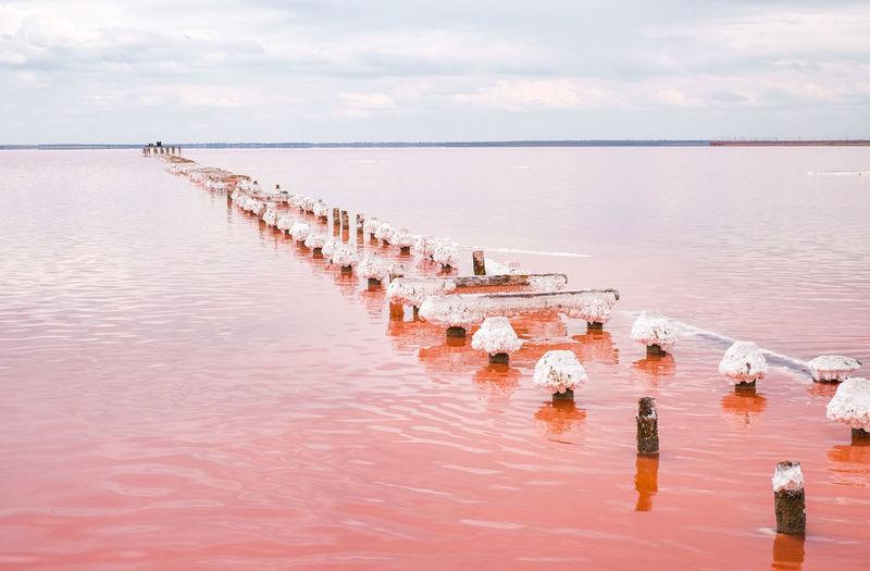 Salty pink lake in crimea