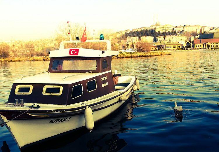 GERMANY🇩🇪DEUTSCHERLAND@ Heilbronn Turkey Lover Turkey Möckmühl Osama Turk