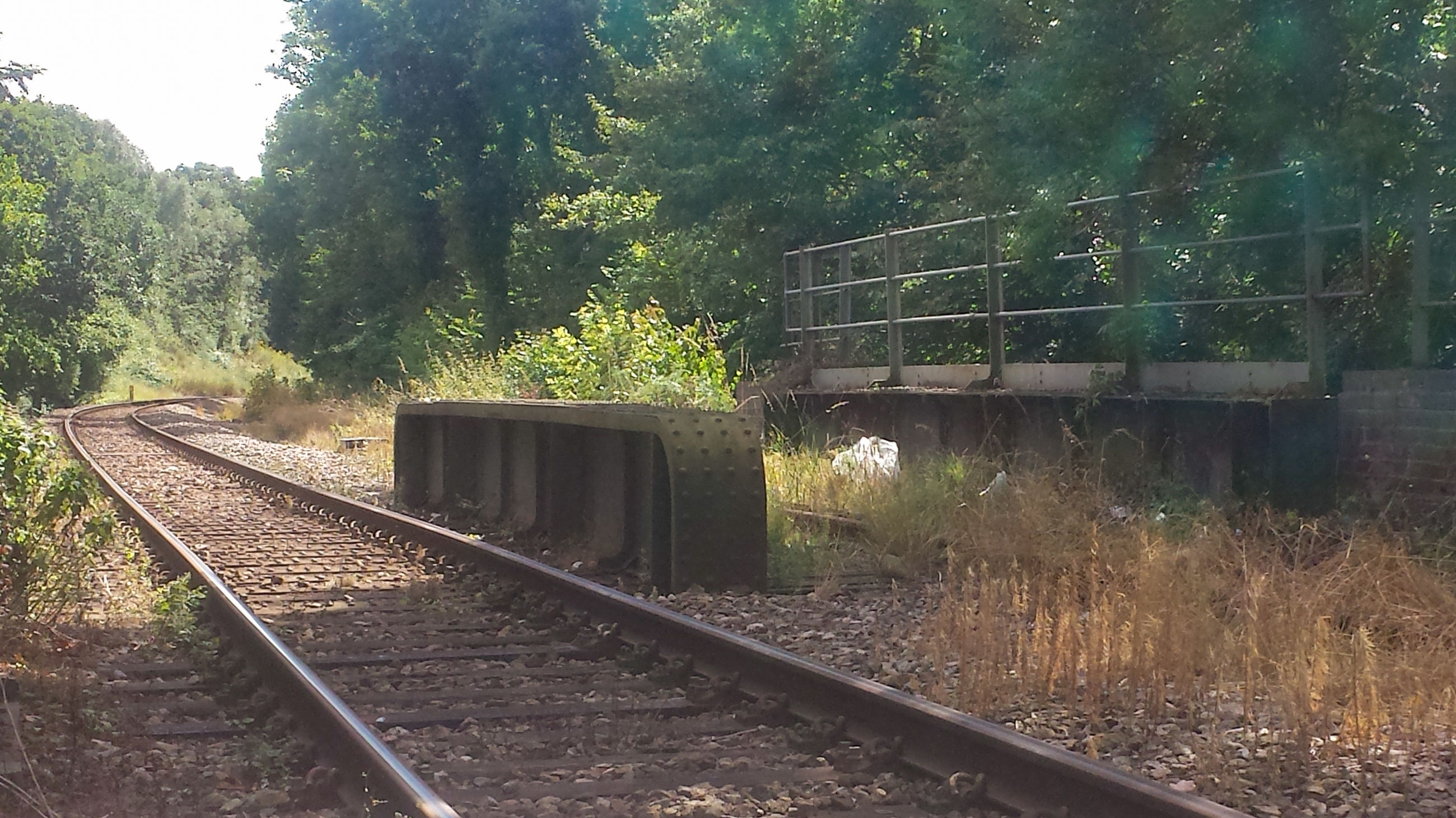 tree, railroad track, transportation, rail transportation, growth, the way forward, green color, day, long, outdoors, nature, railway track, journey, no people, train track, straight, scenics, non-urban scene