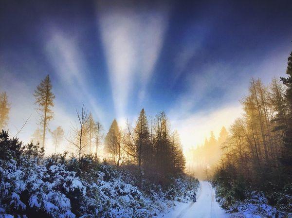 Winter Canonphotography Lowwintersun Winter Wonderland