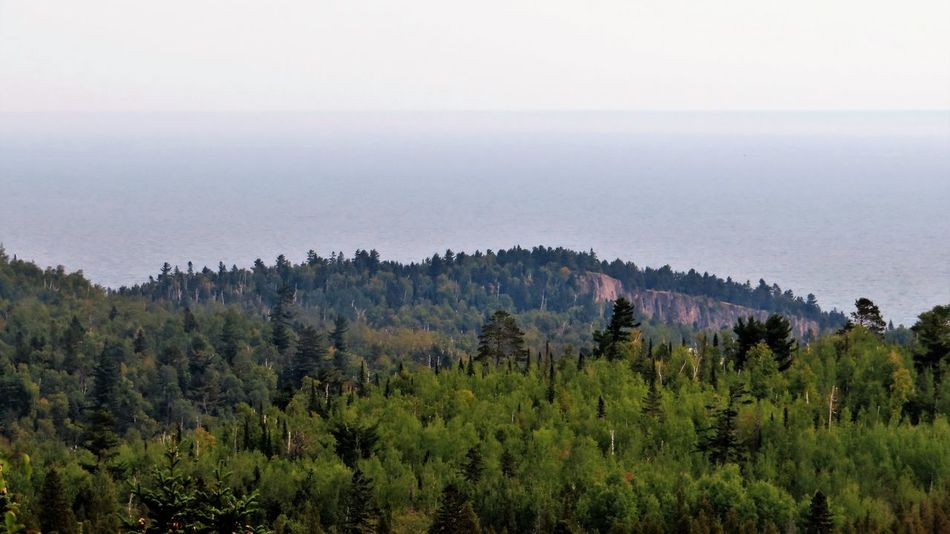 Lake Superior North Shore Shovel Point Beauty In Nature Coniferous Tree Day Environment Forest Green Color Growth Horizon Land Landscape Mountain Nature No People Non-urban Scene Outdoors Pine Tree Pine Woodland Plant Scenics - Nature Sky Tranquil Scene Tranquility Tree View From Above Water WoodLand
