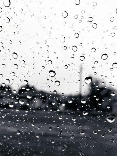 Raindrops on my Window Black And White Black And White Photography Streetphotography Raindrops Rain Bleak Window Outdoors Cold Wet Life Monochrome Glass Torrential Rain Water Drop Rainy Season Transparent