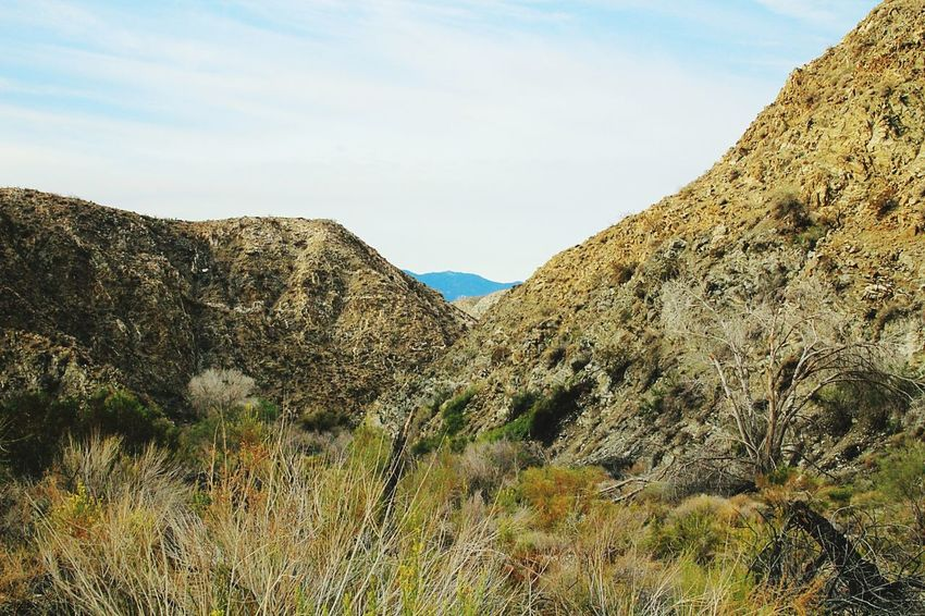 hiking morning preserve Mountain Landscape Scenics No People Beauty In Nature Outdoors Day Sky Hiking Morongopreserve