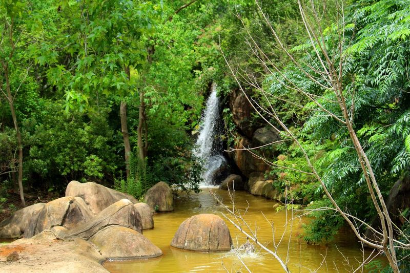 Nature Rock - Object Waterfall Beauty In Nature Outdoors River Tyler Zoo