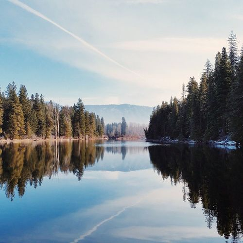 Water is the driving force of all nature - Leonardo da Vinci    Thatpnwlife Livewashington TBT  Igers_seattle_fav vscocam visitpnw