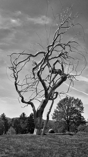 Tree Black And White B&w Photography No People Samsung Galaxy S6 Edge Manmade Nature Immitation Tall Tree Ominous Twisted Metalic Aluminium Metal Monochrome Photography