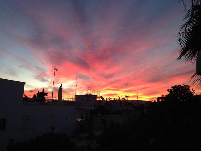 Hello World Greece Myview Livephotography 💜💜