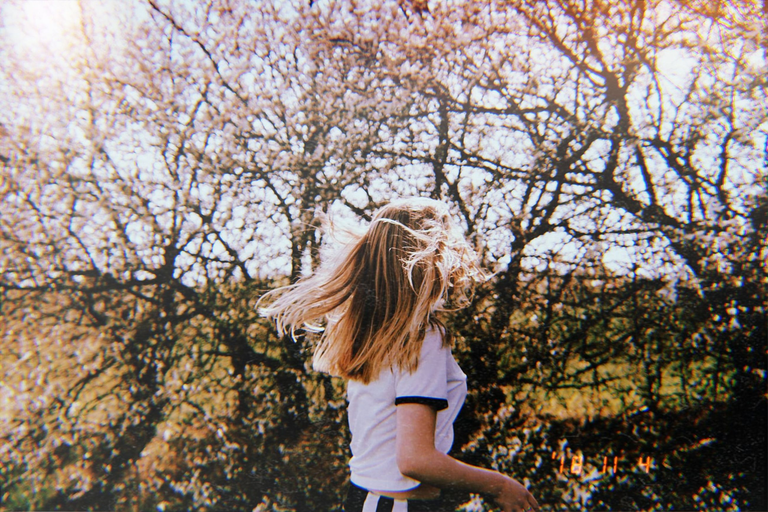 hair, long hair, tree, hairstyle, one person, blond hair, plant, young adult, adult, nature, motion, women, day, casual clothing, autumn, tousled hair, clothing, outdoors, freedom, human hair, hair toss, change, wind, springtime