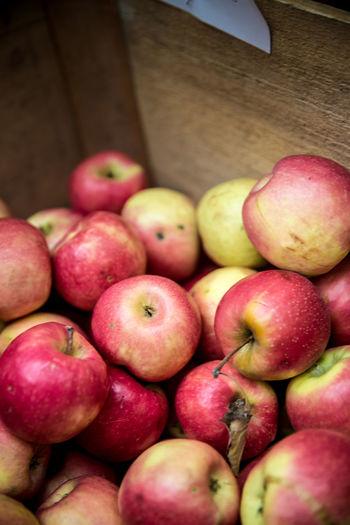 Abundance Apple