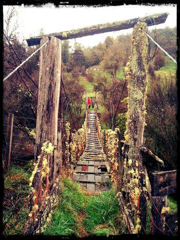 Old Bridge Rickety Swing Bridge Exploring Nature Farm Life Wife And Son