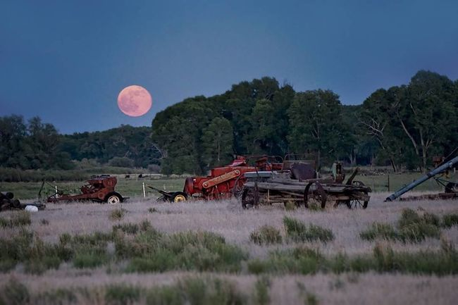 Moon Business Finance And Industry Tree Nature Growth Outdoors No People Astronomy Day Sky Fullmoon Sanluisvalley Montevista Delnorte Agriculture Agricultural Land Blood Moon Harvest Agricultural Machinery Farm Neon Life EyeEm Selects Breathing Space Lost In The Landscape
