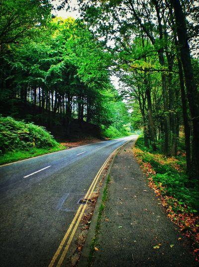 Landscape_Collection Nature_collection EyeEm Best Shots EyeEm Nature Lover