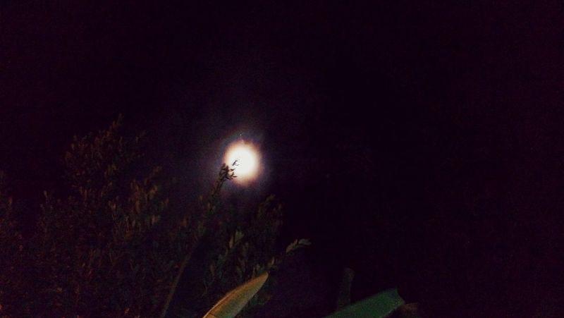 Illuminated Night Adventure Nature EyeEm Nature Moon Moon Shots Moonshining Moonlight Moonporn
