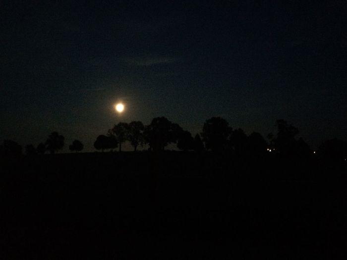 Moon moon Night First Eyeem Photo