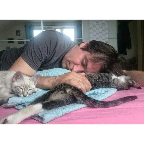 Und Katzendaddy pennt einfach eine Runde 😴 Hasoliebe Echo_the_cat Blanco_the_cat Schlafendetiere_tsez