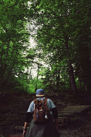 Tree Rear View Photography Themes Photographing Men Nature Adults Only Only Men Leisure Activity Camera - Photographic Equipment Forest Adult Two People Beauty In Nature Outdoors People Day Real People Adventure Technology