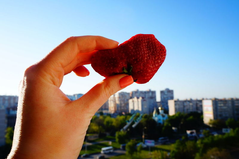 Close-up of hand holding strawberry against clear sky