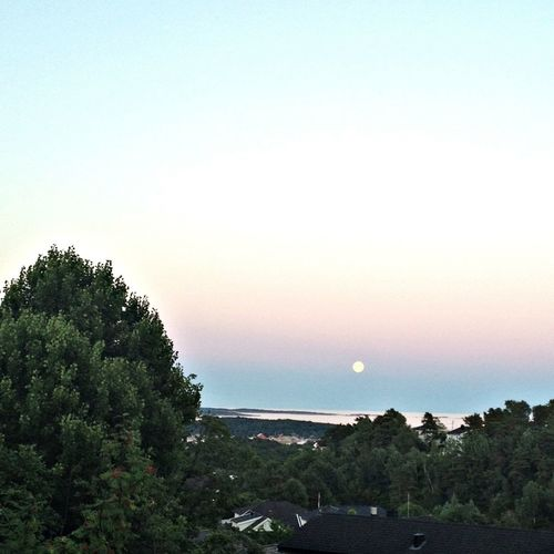 moon is getting up