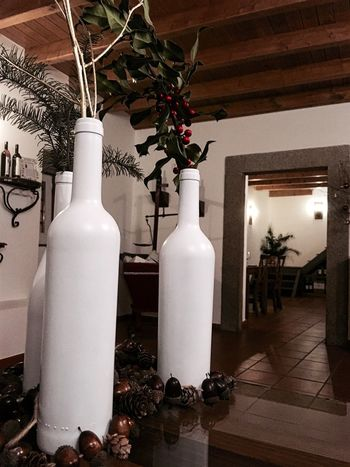 Plant Tree Growth No People Table Indoors  Nature Architecture Day Christmas Decoration Handmade Restaurant Wine Moments