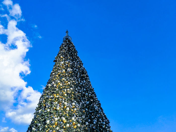 Christmas Tree Christmas Christmas Decoration Celebration Tradition Blue Christmas Lights Tree Topper Tree Celebration Event Low Angle View Holiday - Event Illuminated No People Sky Christmas Ornament Day Outdoors
