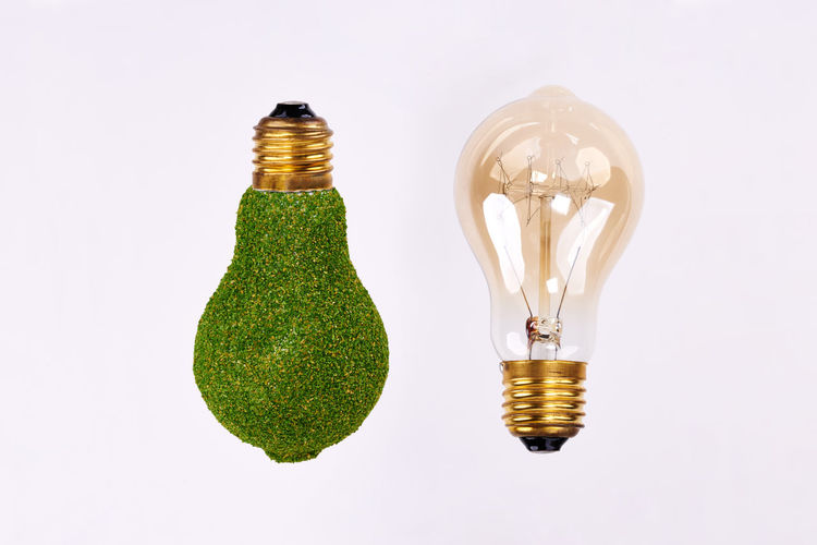 Light bulb and energy efficient lightbulb on white background Light Bulb Energy Efficient Lightbulb Alternative Energy Eco Energy Environmental Conservation Cut Out White Background Green Energy Efficient Efficiency Economy Ecology Comparison Expertise Electricity  Electronics Industry Business Concept Environment Care Protection Renewables Power Supply Lighting Equipment Innovation Symbol Studio Shot Copy Space Fuel And Power Generation