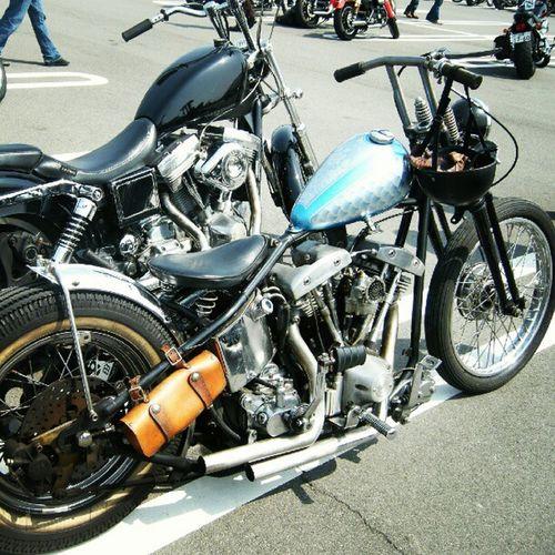 Old photo joints custom show parking Harleydavidson Shovel head Blockhead Fxd chopper bobber