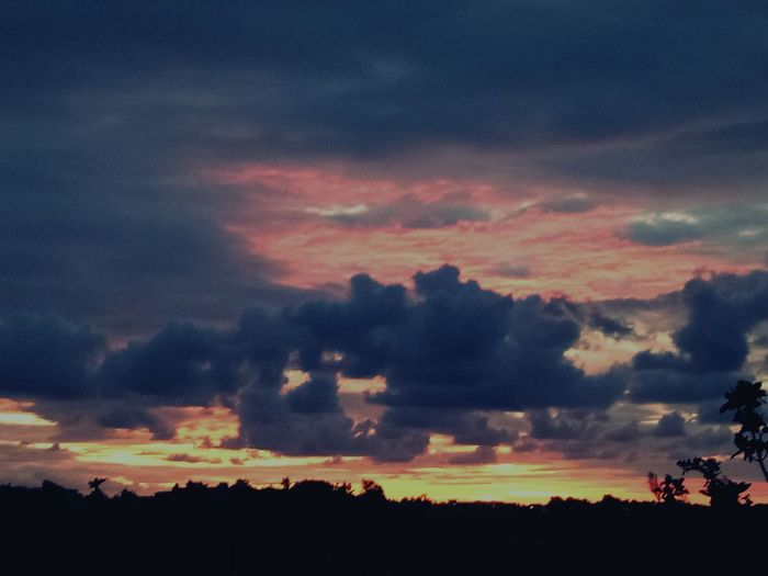 Tree Dramatic Sky No People Silhouette Sunset Scenics Outdoors Beauty In Nature Nature Tranquility AI Now EyeEmNewHere