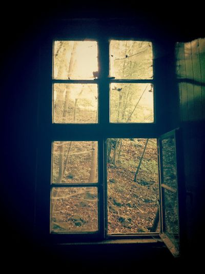 Taking Photos Old House Forest Window