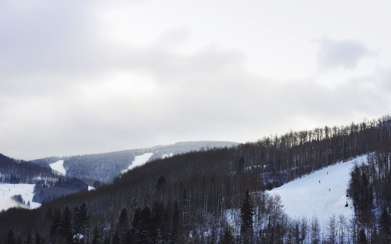 Morning ski Skiiers Ski Resort  Cold Temperature Snow Winter Weather Nature Sky Beauty In Nature Scenics Tranquility Tree White Color Tranquil Scene Landscape Frozen Mountain Outdoors Day Forest