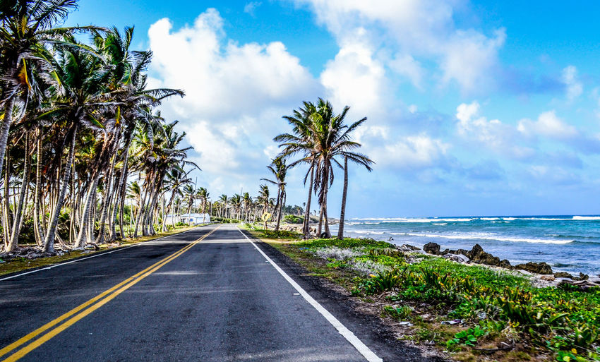 Carretera, San Andrés Colombia. Beauty In Nature Blue Cloud Cloud - Sky Cloudy Day Diminishing Perspective Empty Grass Growth Horizon Over Water Long Nature No People Palm Tree Plant Road Scenics Sea Sky The Way Forward Tranquil Scene Tranquility Tree Vanishing Point