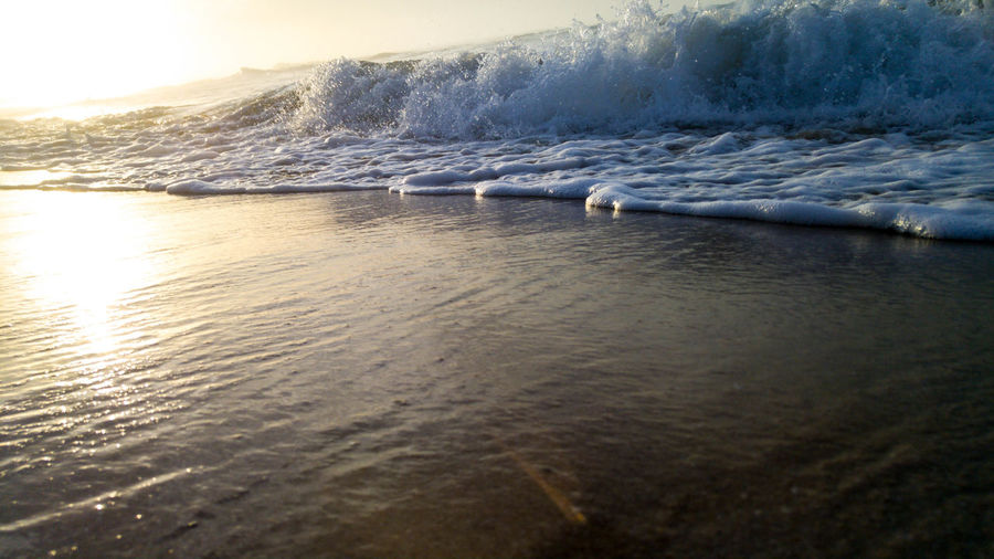 Water Nature Sunset No People Sea Beauty In Nature Outdoors Day Animal Themes Sky South Africa Close-up Eyeemphoto Vacations Sand Scenics Beauty In Nature Travel Destinations Coastal Feature Landscape Icean Waves Blessed  Closeup