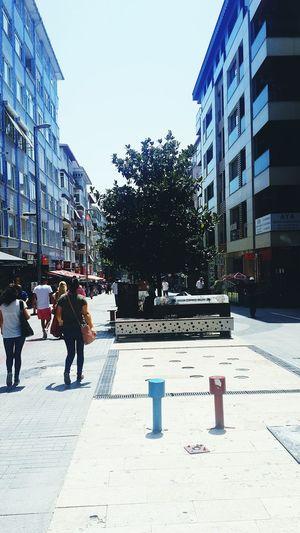 Cennet Cadde Küçükçekmece One Tree You Okey?