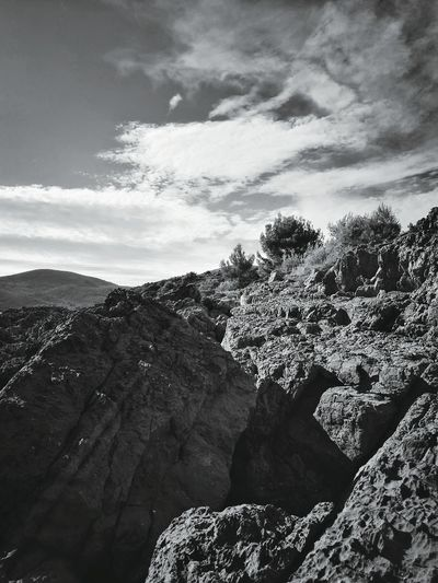 Monochrome Photography Tree Nature Beauty In Nature Sky Scenics Vertical Growth Landscape No People Outdoors Mountain Day Cloud - Sky Close-up Montenegro Wild Beauty Montenegro Naturelovers Made By Me Aurora Minna