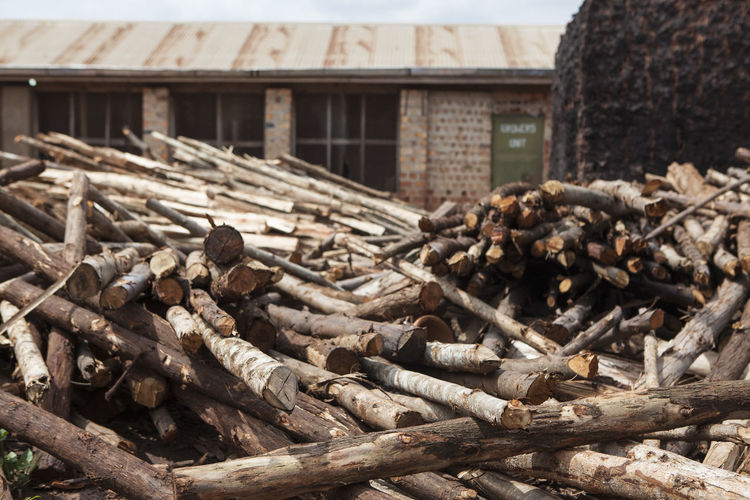 Africa African Building Business Ceramic Close-up Day Factory Forestry Industry Fuel Kiln Log Lumber Industry Material No People Outdoors Pottery Raw Material Social Business Stacked Stacked Logs Timber Warehouse Wood - Material Yard