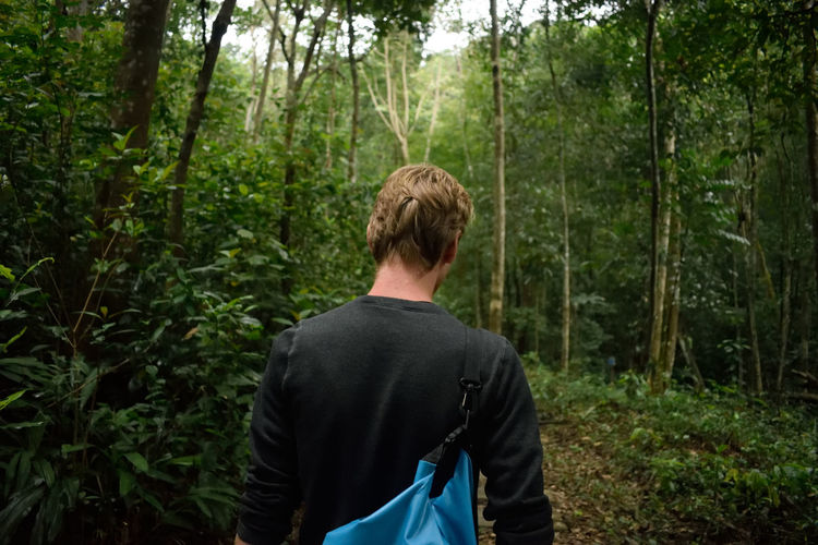 Rear view of a man hiking in forest